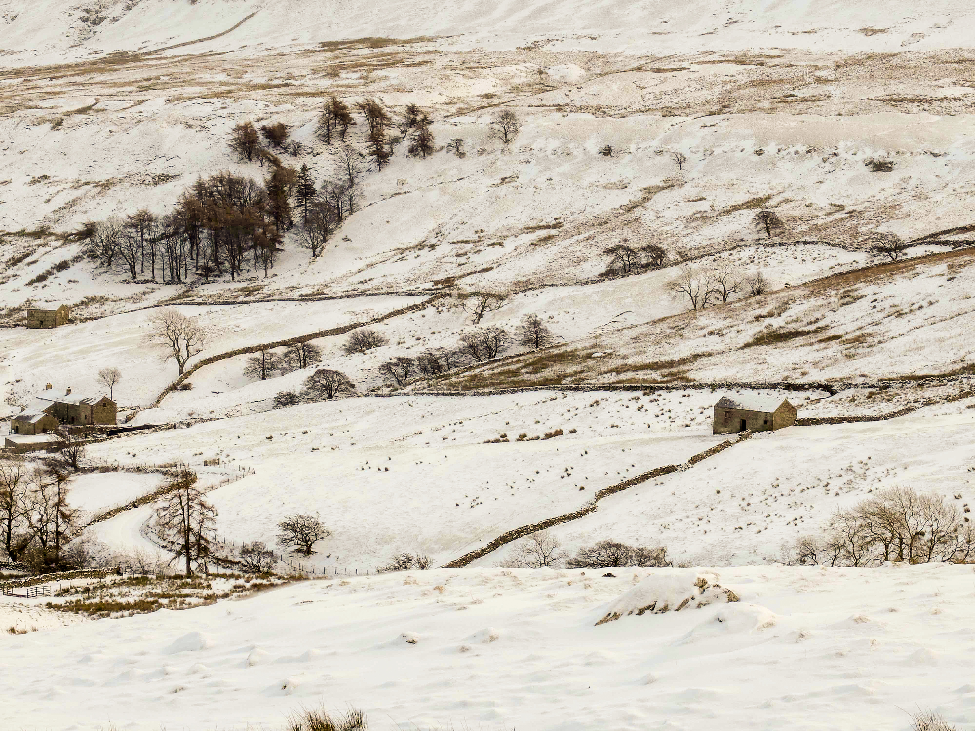 Winter Yorkshire Dales (8)