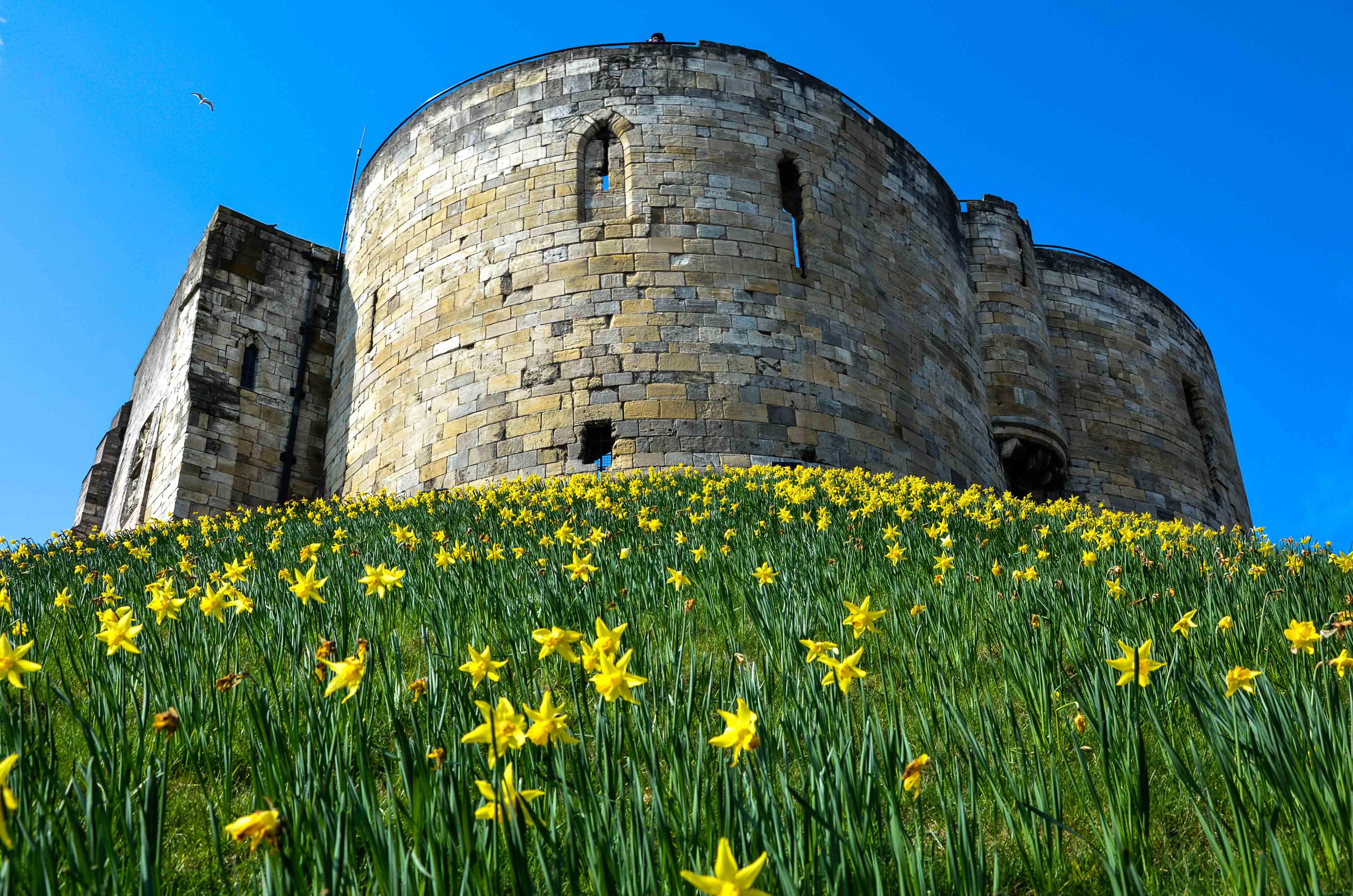 York Castle 1