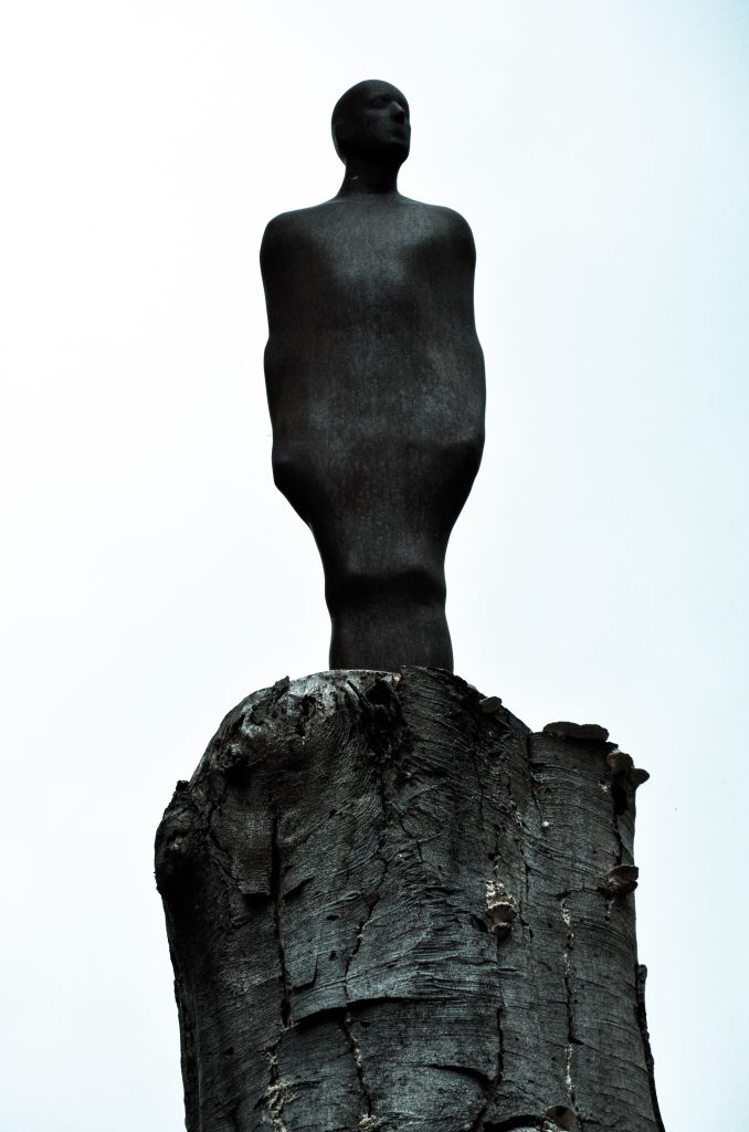 One and Other by Antony Gormley